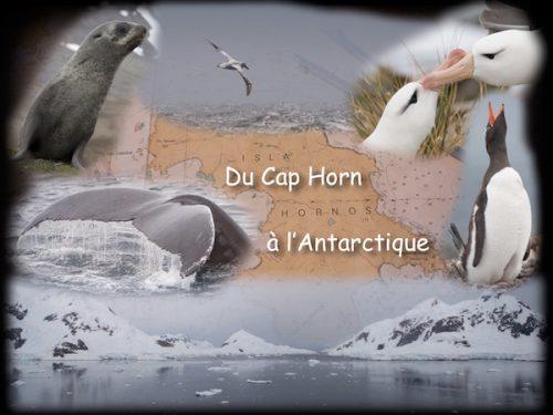 Conférence du Cap Horn à l'Antarctique