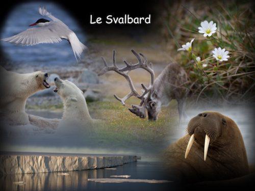 Conférence Le Svalbard ou Spitzberg