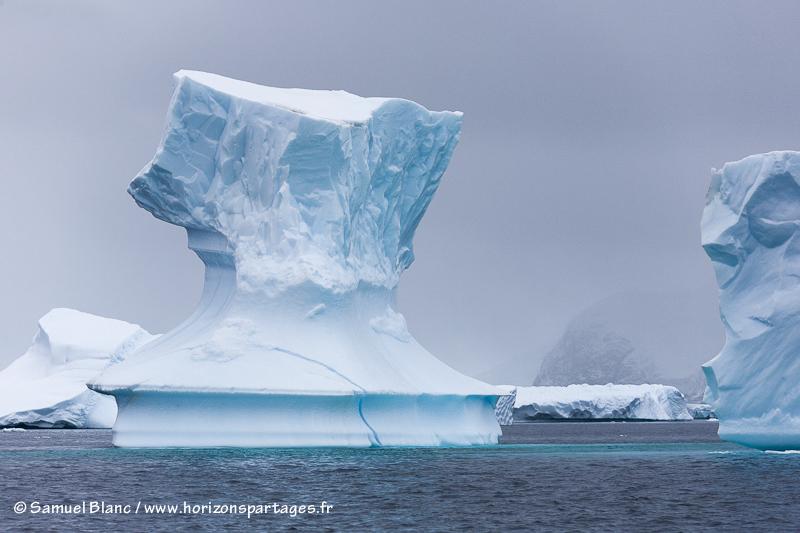 Icebergs proches de l'île Pléneau