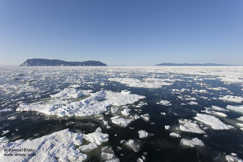 Plaques de banquise en mer d'Okhotsk