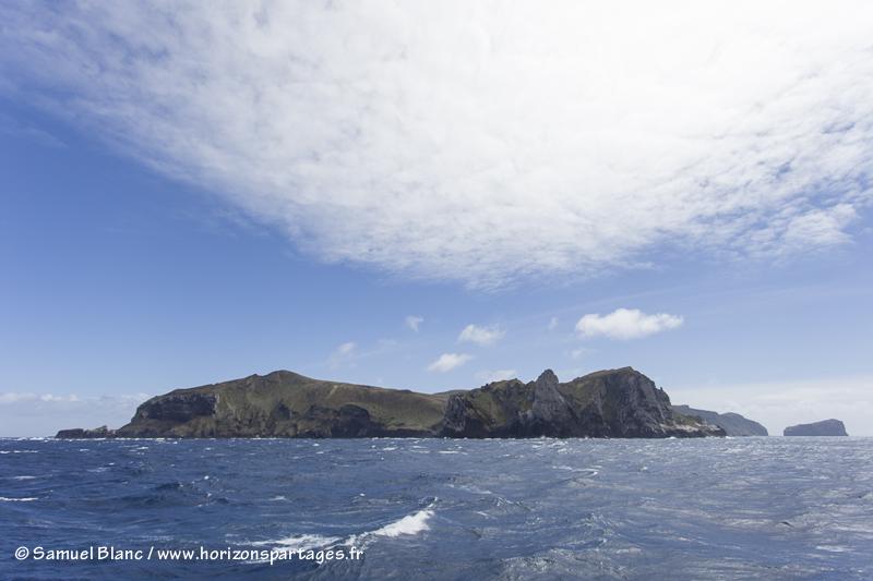 Les îles Antipodes